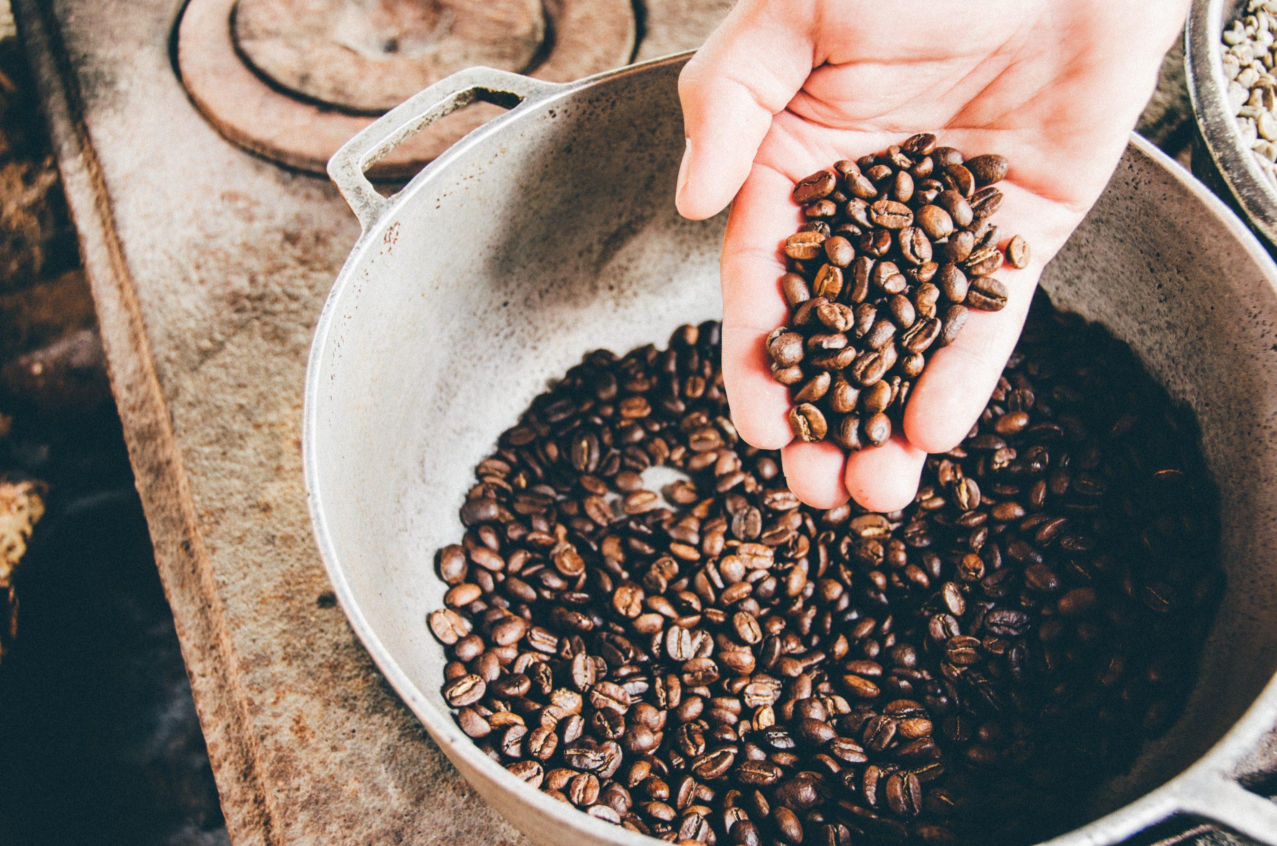 Grains de café entre les mains