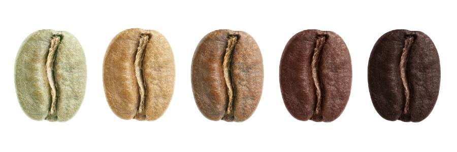 Couleurs grains de café